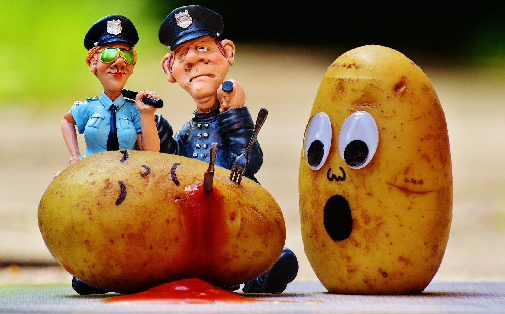 Politia prostituata