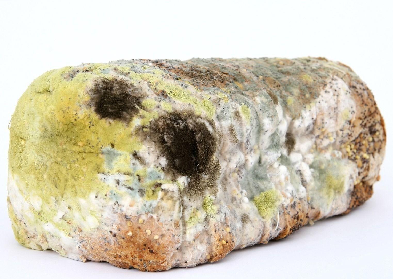 Afaceristii romani din alimentatia publica sunt niste buticari infecti
