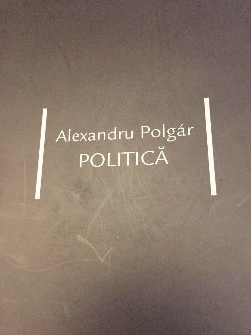 Politica (de Alexandru Polgar) - scurt comentariu