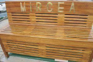 N.S. Mircea si o mica dezamagire