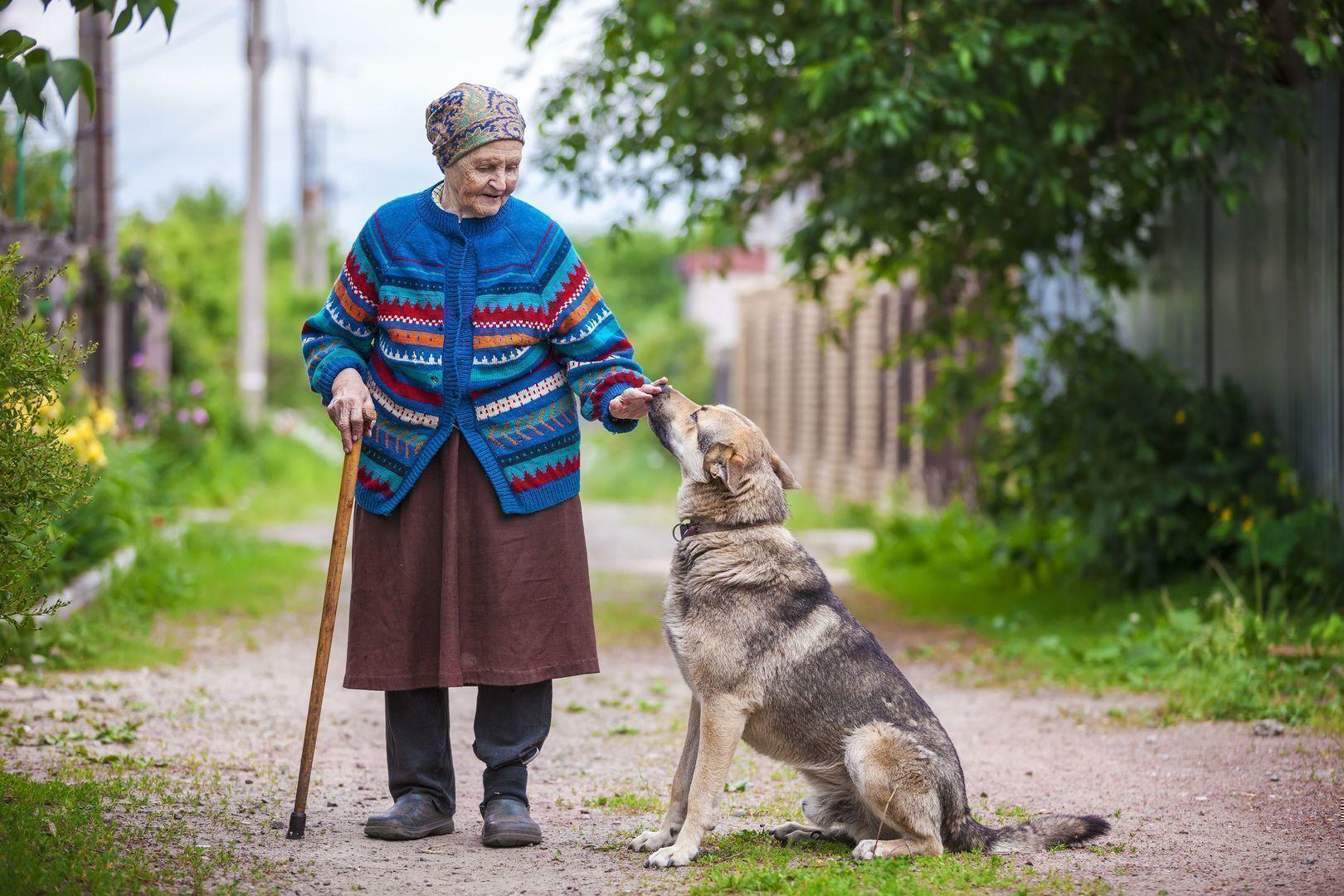 O idee despre adevaratii iubitori de animale