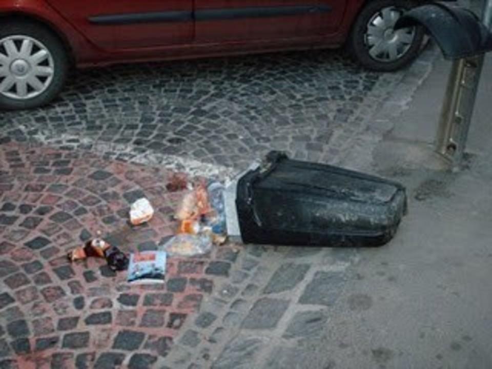 Primaria arunca banii pe gunoi