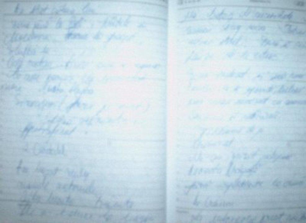 Extras jurnal de candidat
